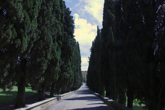 An avenue of ancient cypresses sets the tone.