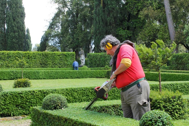 "May must be boxwood trimming month.  The gardener in blue in the background is using manual clippers to make the ""domes""."