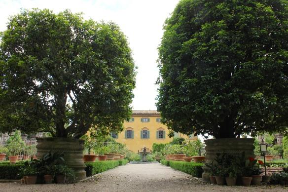 Renaissance symmetry, even in the veggie garden.