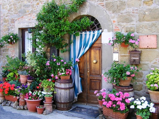Front door garden in the tiny village of  Volpaia, Tuscany