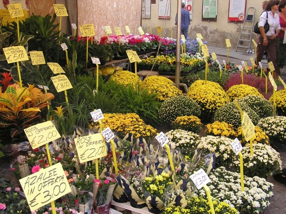 The chrysanthemums are a dead give-away that it's fall.