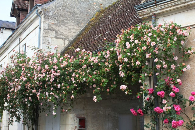 Visite Village Jardin Chedigny : Loving italy s gardens exploring the of one