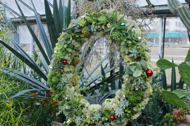 A wreath of succulents.